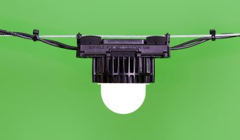LED lighting for poultry and pig farming