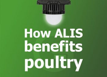 How LED lighting benefits poultry
