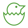 Icons-Website_Chick-Egg-GREEN