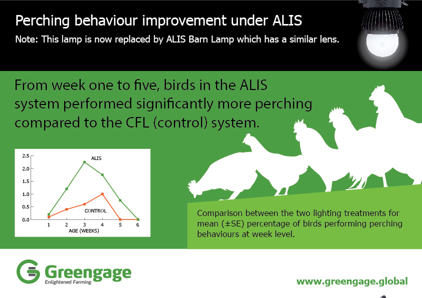 Poultry behaviour improvement